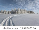 Snowy Field With Rut To The...