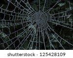 macro shot of spider's web... | Shutterstock . vector #125428109