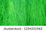 green rice field... | Shutterstock . vector #1254331963