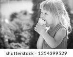 happy child eating ice cream on ... | Shutterstock . vector #1254399529