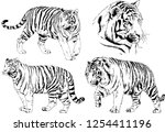 set of vector drawings on the... | Shutterstock .eps vector #1254411196