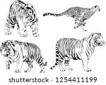 set of vector drawings on the... | Shutterstock .eps vector #1254411199
