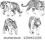 set of vector drawings on the... | Shutterstock .eps vector #1254411220