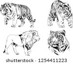 set of vector drawings on the... | Shutterstock .eps vector #1254411223