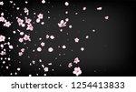 nice sakura blossom isolated... | Shutterstock .eps vector #1254413833