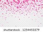 pink pattern of random falling... | Shutterstock .eps vector #1254453379