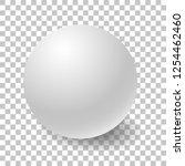 blank white round sphere or 3d... | Shutterstock .eps vector #1254462460