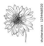 gerbera flower. isolated vector ... | Shutterstock .eps vector #1254468520