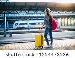 beautiful young casual tourist... | Shutterstock . vector #1254473536
