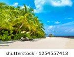 wooden sunbed on tropical beach ...   Shutterstock . vector #1254557413