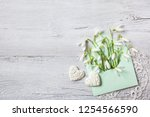 snowdrops in an envelope on a... | Shutterstock . vector #1254566590