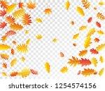 oak  maple  wild ash rowan... | Shutterstock .eps vector #1254574156