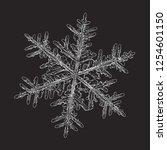 snowflake isolated on black... | Shutterstock .eps vector #1254601150