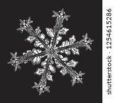 white snowflake isolated on... | Shutterstock .eps vector #1254615286