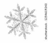 snowflake isolated on white... | Shutterstock .eps vector #1254619243