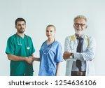 group of happy doctor surgeon... | Shutterstock . vector #1254636106