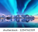 Northern Lights And Snow...