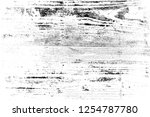 abstract background. monochrome ... | Shutterstock . vector #1254787780
