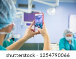 assistant shooting on the... | Shutterstock . vector #1254790066