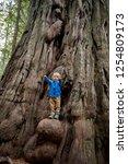 young boy climbs a growth on a... | Shutterstock . vector #1254809173