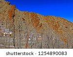 leh ladakh india april 11  ...   Shutterstock . vector #1254890083