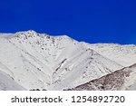 leh ladakh india april 11  ...   Shutterstock . vector #1254892720