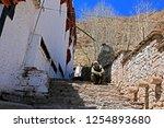 leh ladakh india april 11   the ...   Shutterstock . vector #1254893680