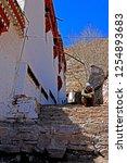 leh ladakh india april 11   the ...   Shutterstock . vector #1254893683