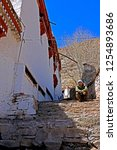 leh ladakh india april 11   the ...   Shutterstock . vector #1254893686