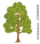 illustration high tree with...   Shutterstock .eps vector #125489639
