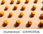 top view pattern background of... | Shutterstock . vector #1254923536