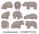 set of large gray hippo in... | Shutterstock .eps vector #1254977476