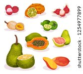 detailed flat vector set of...   Shutterstock .eps vector #1254977899