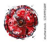 red vector poppy flower. big... | Shutterstock .eps vector #1254992689
