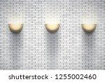 interior of white brick wall... | Shutterstock .eps vector #1255002460