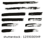 paint brush thin lines high... | Shutterstock .eps vector #1255030549