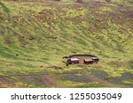 high altitude farm with many... | Shutterstock . vector #1255035049