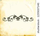 retro baroque decorations... | Shutterstock .eps vector #1255037140