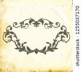 retro baroque decorations... | Shutterstock .eps vector #1255037170