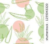 vector aloe vera hand drawn... | Shutterstock .eps vector #1255043320