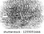 abstract background. monochrome ... | Shutterstock . vector #1255051666
