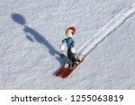 white fantasy skier | Shutterstock . vector #1255063819