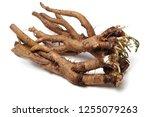 medicinal herbs raw materials... | Shutterstock . vector #1255079263