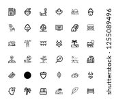 editable 36 tree icons for web... | Shutterstock .eps vector #1255089496