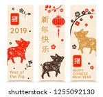 happy chinese new year 2019... | Shutterstock .eps vector #1255092130