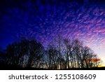 Multi Colored December Sunrise...