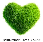 green leaves in heart shape... | Shutterstock . vector #1255125670