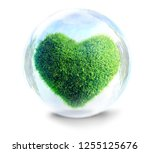grass heart in glass bubble a... | Shutterstock . vector #1255125676