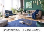 green and blue living room... | Shutterstock . vector #1255133293