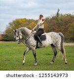 young woman with a horse for a... | Shutterstock . vector #1255143973